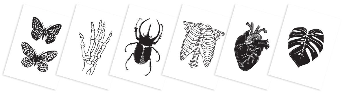 Création de dessins pour produits Eshop - Iconink